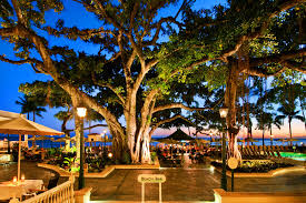 the moana surfrider hotel of waikiki hawaii u2014elegance for the ages