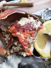 cuisine farce farce et corail délicieux picture of le crabe marteau brest