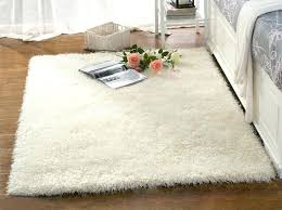 Area Rugs Home Goods Tj Maxx Home Goods Rugs Design Home Goods Carpets Amazing