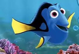 4 answers finding nemo kind fish dory quora