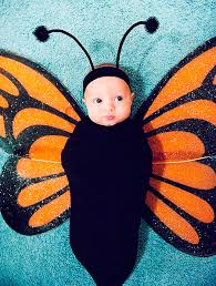 baby halloween costumes fun ideas for your baby goodtoknow
