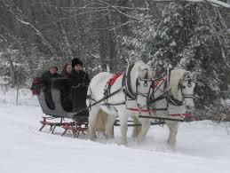 Price Of Rides At Winter Sleighrides Sleigh Rides At Loon Meadow Farm In