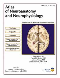 Netter Atlas Of Human Anatomy Pdf Download Netter De Neurologia Pdf