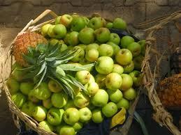 modern nomad field guide fruit madagascar
