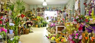 florist shop spalding florist and gift shop flowers n things spalding