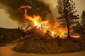the california wildfires the toll rises the new york times