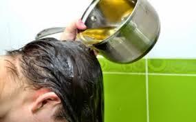 Minyak Zaitun Untuk Memanjangkan Rambut cara menggunakan minyak zaitun untuk rambut tips rambut