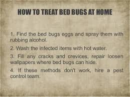 Can Bed Bugs Live In Water A Short Guide To Bed Bugs