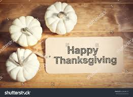 small thanksgiving happy thanksgiving message small white pumpkins stock photo