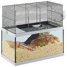 gabbie scoiattoli gabbie per gerbilli e scoiattoli ferplast gabry 60 spaziosa vetro