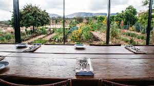 Does Mexico Have Thanksgiving Where To Eat And Drink In Mexico U0027s Valle De Guadalupe Food U0026 Wine