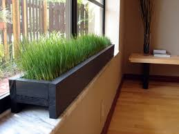 indoor windowsill planter dsc00844 jpg plant box window sill and grasses