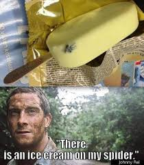 Bear Gryls Meme - what are some of the best bear grylls tv host jokes memes quora