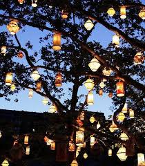 19 best outdoor lighting ideas images on cable