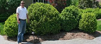 Landscaping Franklin Tn by Contact Us Green Acres Landscaping For Franklin Brentwood