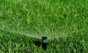 garden irrigation system stock photo image of grass ornamental