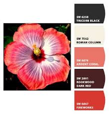 359 best colors and palettes reds oranges yellows images on