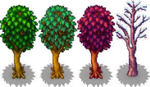 maple tree stardew valley wiki