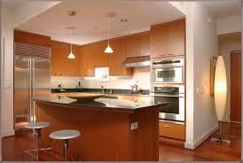 home designer pro lighting kitchen countertop types megan hess countertops options following