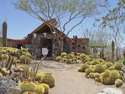 desert garden design desert landscaping ideas landscaping network