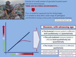 bureau avec ag e int r what does explain the burden ppt