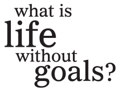 what is without goals wall quotes decal wallquotes