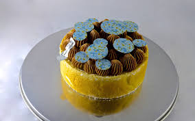 pralin de cuisine entremet praliné orange spot atelier all rights reserved
