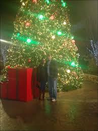 eve drop christmas lights christmas shark tank christmas lights lovely uh oh charlie