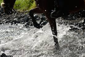 hatari jeep reiturlaube archiv horsebackriding africa macoa farm com in tanzania