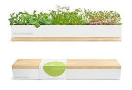 Window Sill Herb Garden Designs Sensational Design Ideas Windowsill Herb Garden Kit