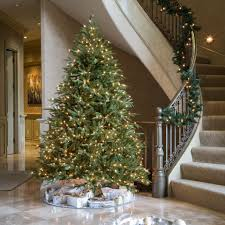 fraser fir christmas tree fraser fir christmas tree for sale garden goods direct