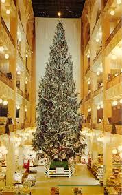 the sterling lindner davis trees