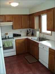 Light Green Kitchen Cabinets Kitchen Kitchen Wall Paint Ideas Light Green Kitchen Cabinets