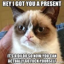 Dildo Meme - hey i got you a present it s a dildo so now you can actually go