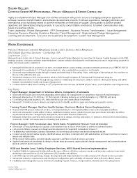 Sample Resume Business Development by Sample Resume For Business Manager Free Resume Example And