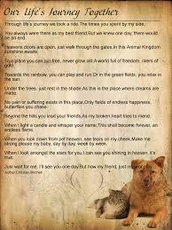 pet prayer a dogs prayer pet prayers dogs dog pet loss and
