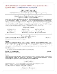 Best Youth Resume by Resume Resume For Daycare Worker