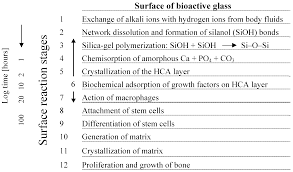materials free full text bioactive glass and glass ceramic