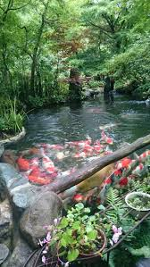 home decor waterfalls small japanese garden design best waterfalls fountains and ponds