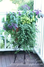 Fragrant Patio Plants Front Porch Flowers Stonegable