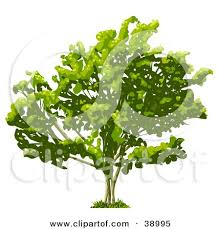 clipart illustration graphic of a silhouetted gradient green tree