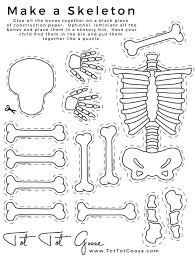 skeletal system model cut outs for children kids students