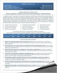 executive resumes templates senior business executive resume graham