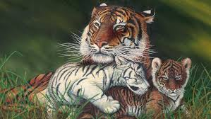 tiger and cubs painting desktop wallpaper free