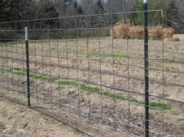 types hog fence panels ideas design u0026 ideas
