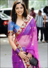 telugu nishanti evani in blue transparent saree pics