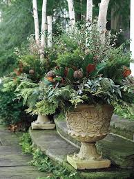 12 christmas container displays to inspire you garden pics and tips