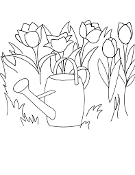 free printable coloring clipart tulips watering