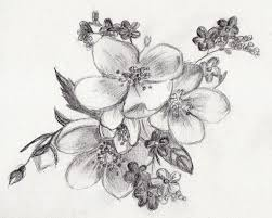 beautiful flowers pencil sketches drawing of sketch