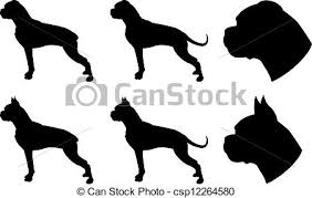 boxer dog in boxing gloves boxer stock photo images 909 392 boxer royalty free images and